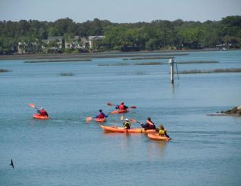 Kayaking Jarvis Creek