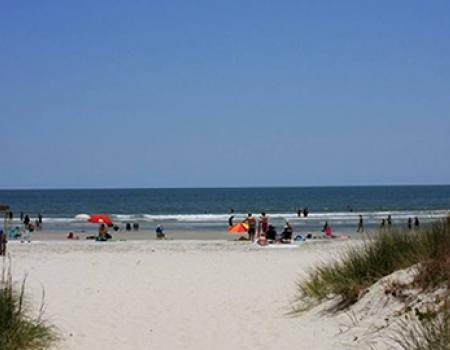 Hilton Head Communities | Burkes and Singleton Beach