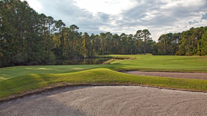 Palmetto Hall Plantation's Robert Cupp Course